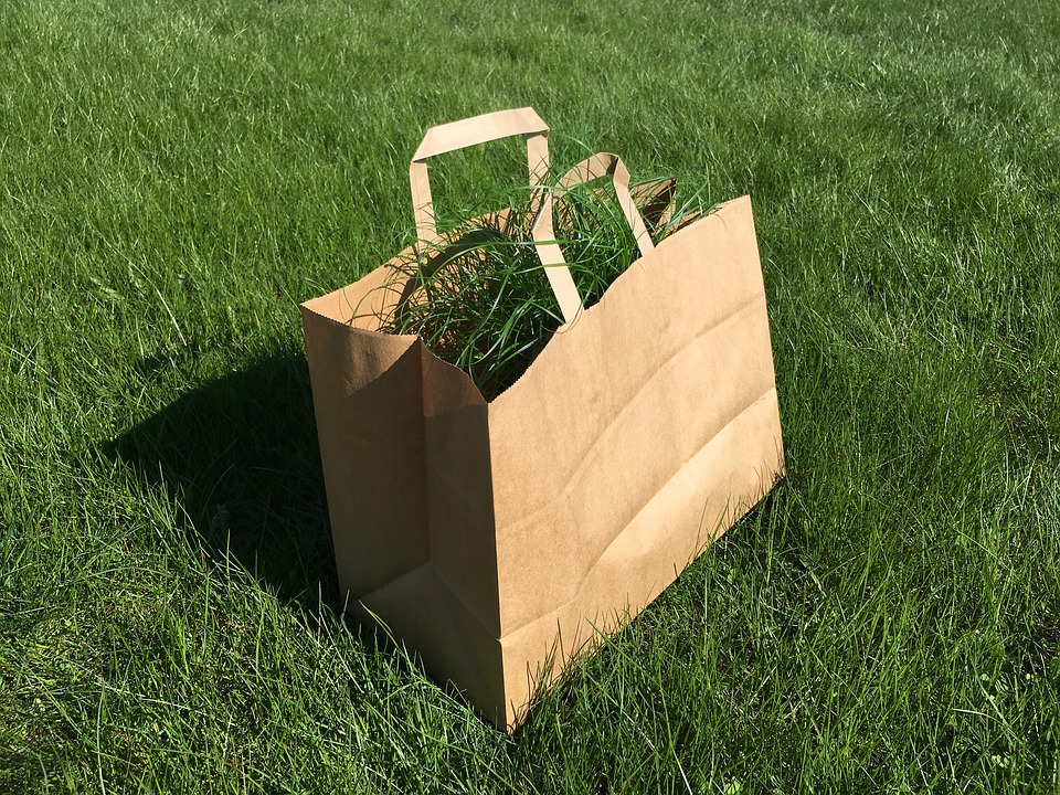One brown paper bag with handles and with grasses inside placed on the ground.
